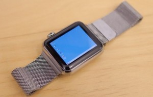 A Programmer could run Windows 95 on Apple Watch
