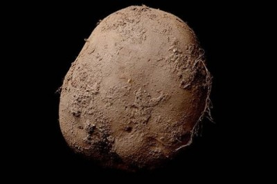 This photograph of a potato costs more than $ 1 million